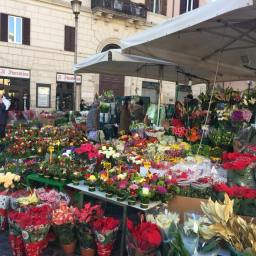 Christmas in Rome, December 23rd