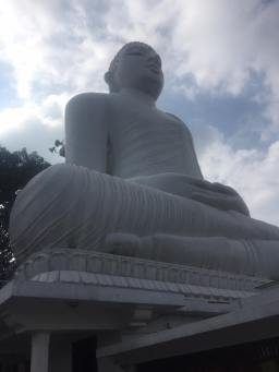 A Big Buddha and Paratha Fry