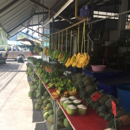 Living On Phuket Island
