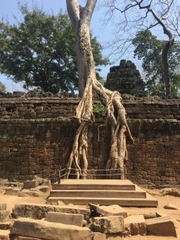 Angkor Wat: Day 2